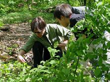 Volunteers doing field work.