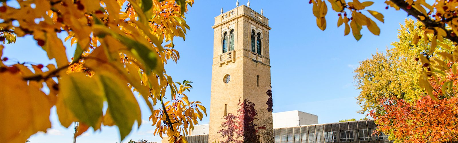 Carillon Tower framed with fall leaves